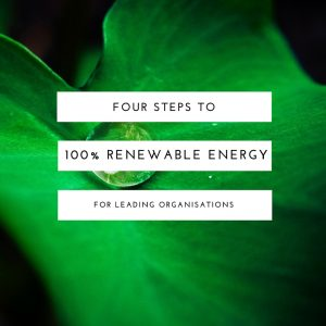 Barbara Albert book 100% renewable energy